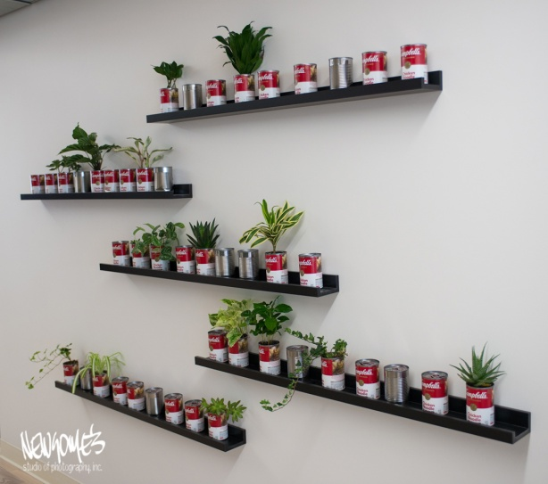 The Campbells Wall for Tiny Plants. Employees plant their own.